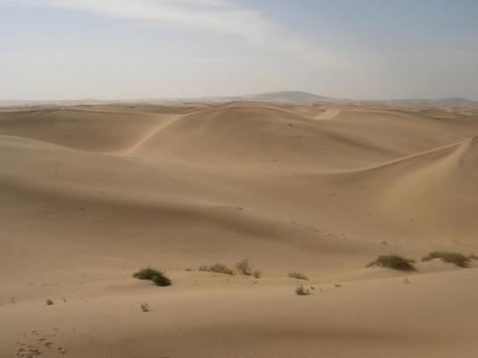 padang-pasir-kosong